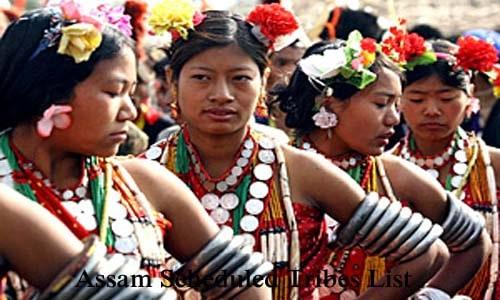 असम की अनुसूचित जनजातियाँ