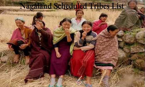 नागालैंड की अनुसूचित जनजातियां