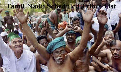 तमिलनाडु की अनुसूचित जनजातियां