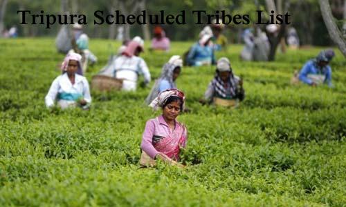 त्रिपुरा की अनुसूचित जनजातियां