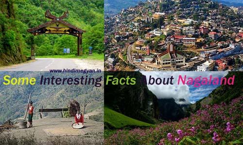 नागालैंड राज्य के बारे में कुछ जरुरी जानकारी
